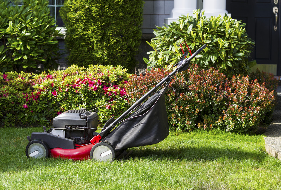 Winter Lawn Care: 4 Steps to Protect Your Turf