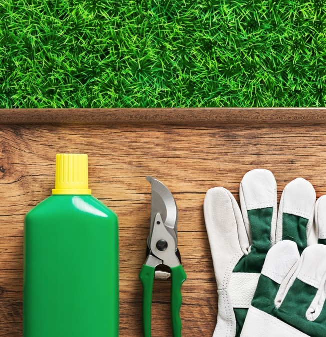 Do Organic Home Remedies for Lawn Care Work?